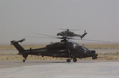Mangusta-a-Herat