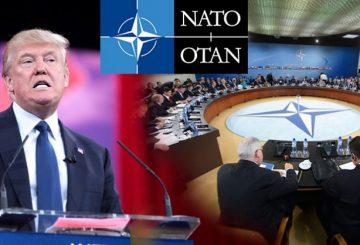 Trump_NATO-1014x487