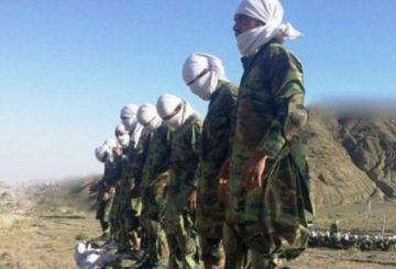Talebani-diploma-propaganda-afghanistan-784x348