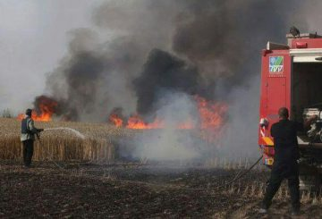 Negev-Fire-and-Rescue-Squad-fire-in-field