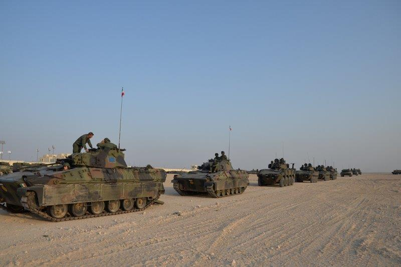 colonna mezzi da combattimento (002)