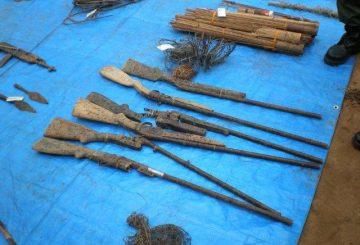 Congo-arms