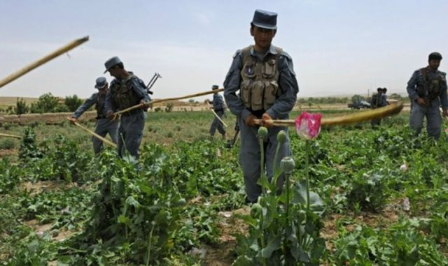 working_routine_of_afghan_national_police_640_25